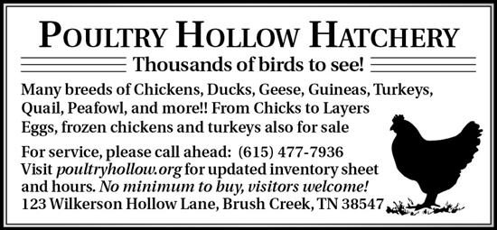 Poultry Hollow