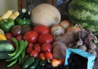 Happy-Harvest-CSA-Basket-By-Bracken-Mayo-Custom