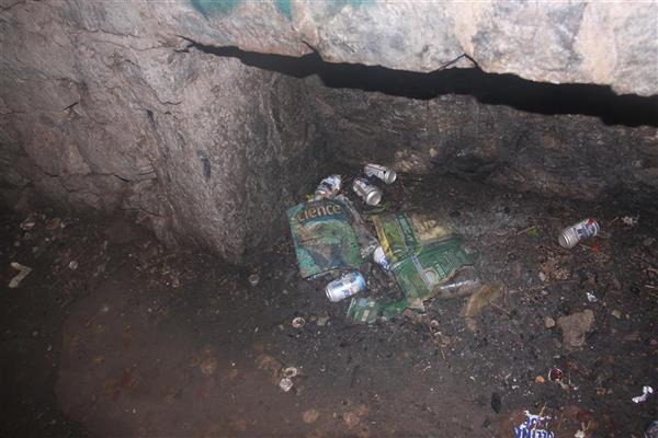 Black Cat Cave burn-your-textbooks