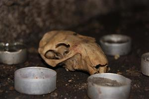 Black Cat Cave c ritual
