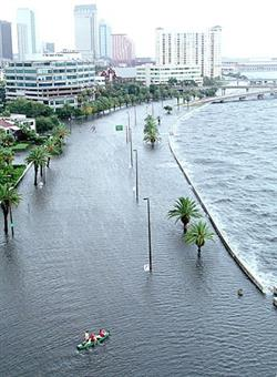 bayshore_flood_small