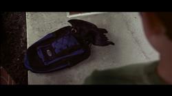The Black Bird (1)