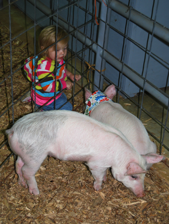 girl with piglets