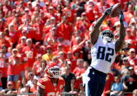 Delanie Walker was one of the few bright spots for the Titans this season.
