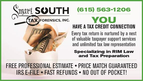Smart South Tax Forensics