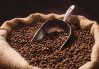 coffee-beans1
