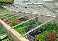 Cold-frame-sashes-up1