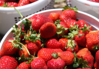 Strawberries_MurfreesboroPulse