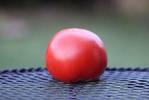 Tomato (2) (Custom)