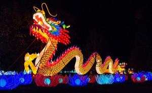 China Lights (2)