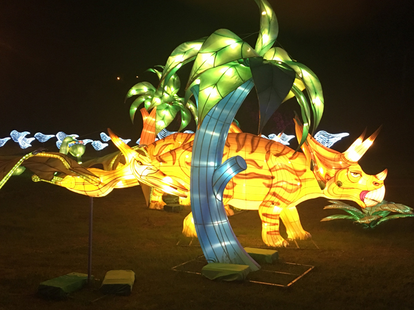 China Lights (9)