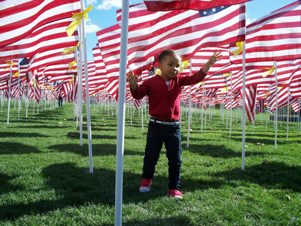 May 27–29 - The Healing Field Flags