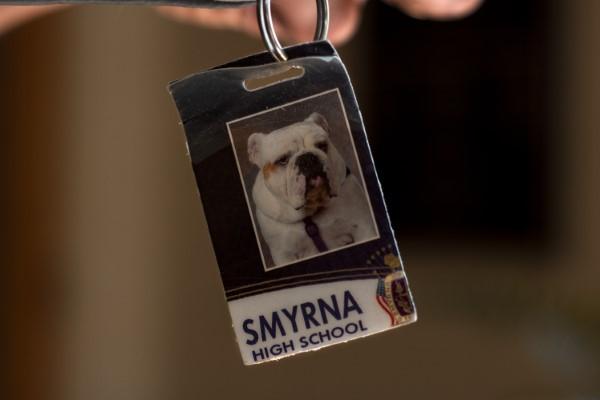 Adopted Bulldog Ace Becomes Smyrna High School Mascot ...